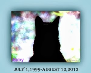 Rest in Peace Abby