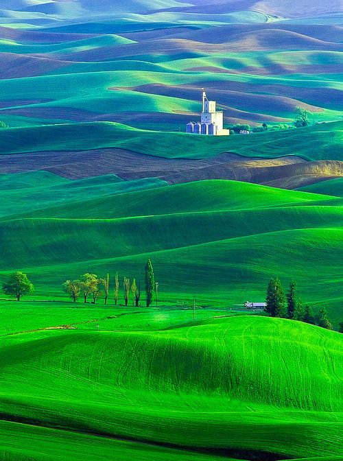 Palouse region of Washington state, Washington, USA