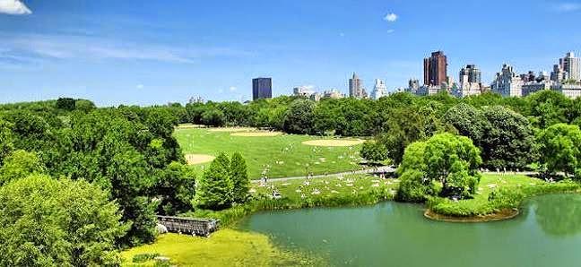Central Park Pedicab tours -Turtle Pond
