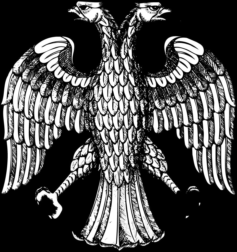 Shqiperia Jone: Shqiponja dykrenare e zbuluar në Rodon