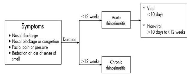 acute-sinusitis-summary