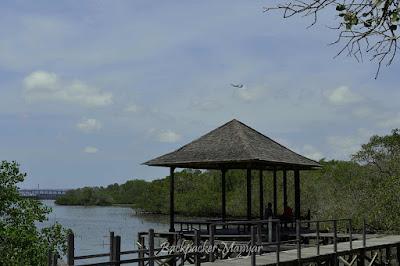 Beristirahat di resting Hunt Hutan Mangrove Taman Hutan Raya Ngurah Rai Bali - Backpacker Manyar