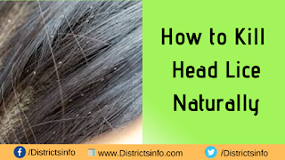 How to Kill Head Lice Naturally