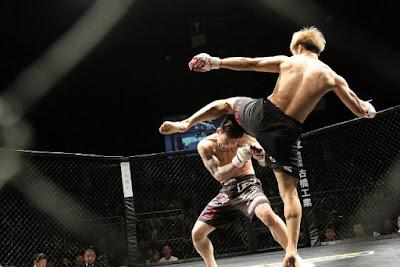 فنون القتال المختلطة مزيج بين جميع أنواع الفنون القتالية