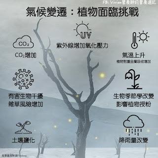 Vivian營養師【食事趨勢】氣候變遷對植物健康影響
