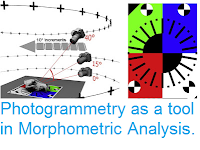 https://sciencythoughts.blogspot.com/2016/07/photogrammetry-as-tool-in-morphometric.html