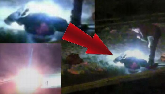 ¿Qué demonios está pasando en Yellowstone? Encuentran un extraño ser Extraterrestre tirado en el suelo