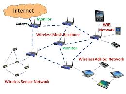 Effectiveness of Monitoring for Intrusion Detection in Mobile Ad Hoc Networks