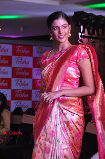 South Indian Celebrities Pos at Love For Handloom Collection Fashion Show  0121.jpg