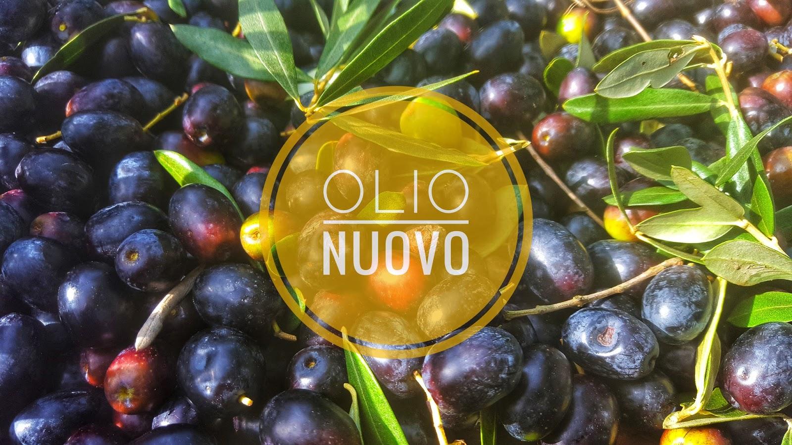 ORO VERDE: OLIO NUOVO | A Gipsy Soul