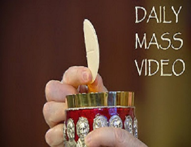 THE DAILY MASS VIDEO - IN ENGLISH