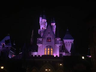 Sleeping Beauty Castle Night