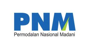 LOKER 4 POSISI DISABILITAS PT. PNM  APRIL 2020