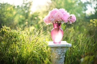 canlı çiçek ne kadar dayanır