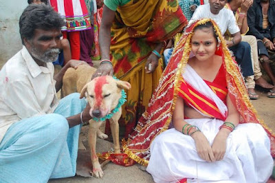 The stray dog named Sheru was found by Mangli's father