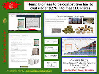 MOhemp Kenya Investor infographic biomass income projection