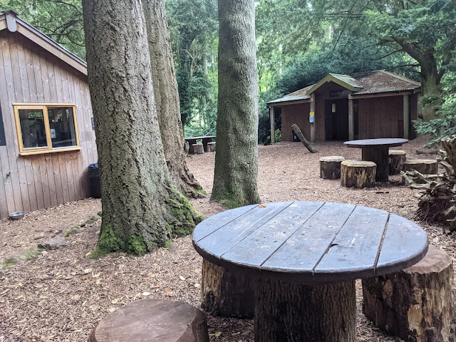 The Best Adventure Playground in the Lake District (Lowther Castle) - cafe and toilets