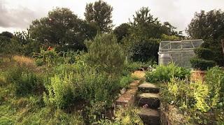 The Harlow family garden