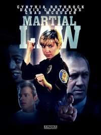 Martial Law 1990 Hindi - English Full Movies HD Dual Audio 480p