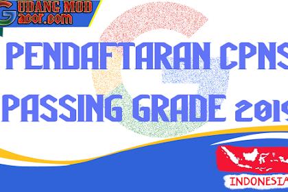 Passing Grade Lulusan CPNS 2019 Nilai Ambang Batas Seleksi CPNS