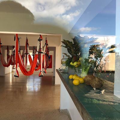 aerial pilates, aerial yoga, aeropilates, aeroyoga, air yoga, bienestar, ejercicio, formacion, puerto rico, sport, teacher training, us, usa, wellness, yoga aerea, yoga aereo, yoga alliance