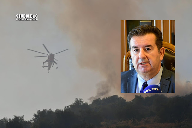 Αντιπεριφερειάρχης Αργολίδας: Συγκροτείται επιτροπή καταγραφής των ζημιών από την πυρκαγιά στο Αραχναίο