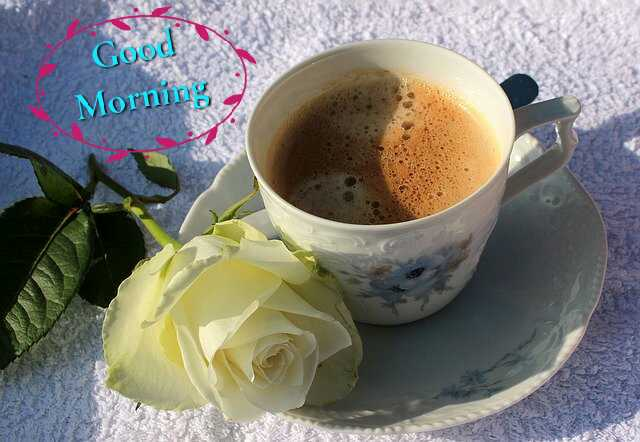 Awesome Good Morrning image with coffee cup and White rose flower have a nice day