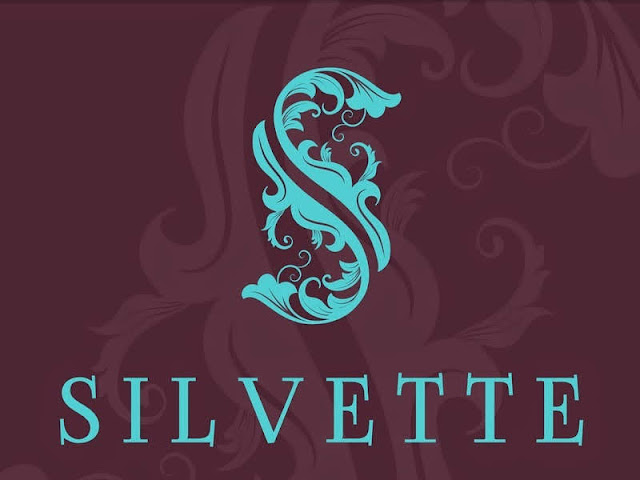 Accessory Shopping via Silvette, Website Review