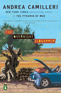Review of The Overnight Kidnapper by Andrea Camiller