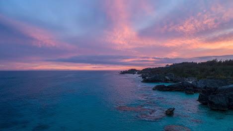 Purple islands