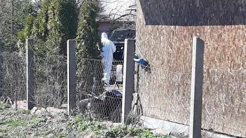 Hatalmas rendőri akció Kókán: a TEK is kivonult a helyszínre