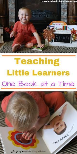 Teaching Little Learners One Book At A Time - Priddy Books Early Learning Collection review