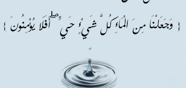 أهمية الماء