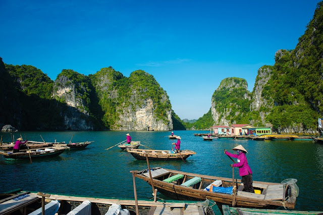 Best Itinerary Of Sapa Halong Bay Tour Package 2020 2