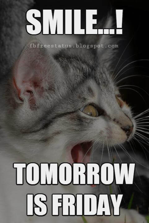 thursday funny quotes smile tomorrow is friday