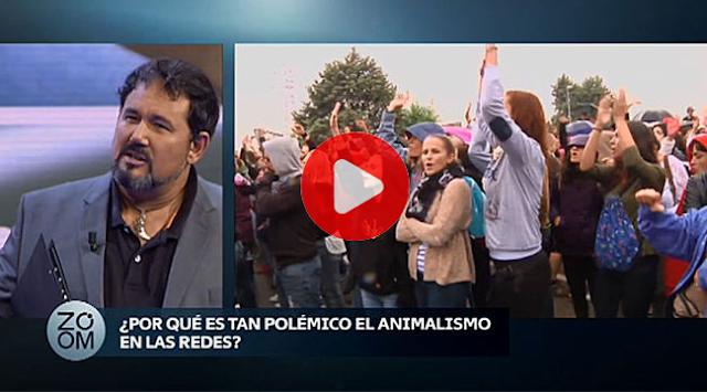 """ALEX N.LACHHEIN :""""LOS ECOLOGISTAS BUSCAN VIVIR DE LA POLÍTICA Y GESTIONAR DINERO PÚBLICO"""""""