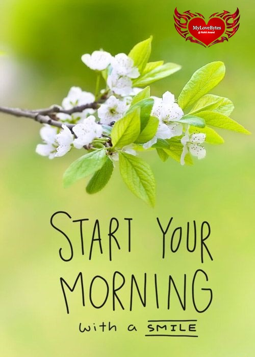 Daily Morning Quotes & Messages, Good Morning Inspiration and Have A Nice Day wishes for him and her