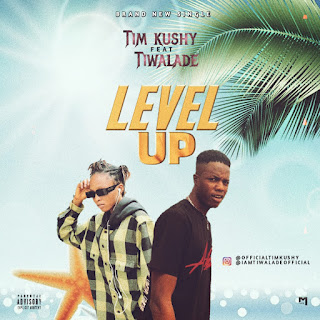 [Music] Tim kushy Ft Tiwalade - Level up