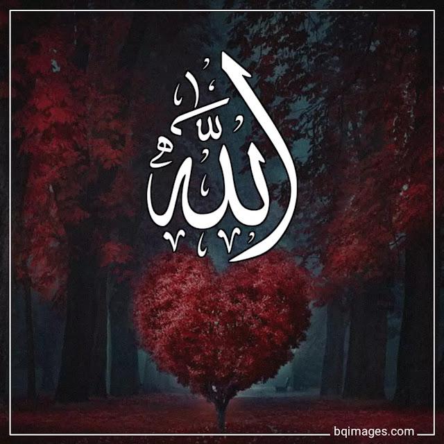 allah name dp for whatsapp download