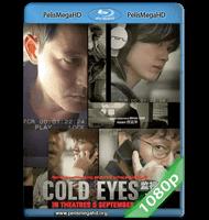 VIGILANCIA EXTREMA (2013) 1080P HD MKV ESPAÑOL LATINO