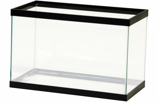 Choose suitable aquarium for ecosystem