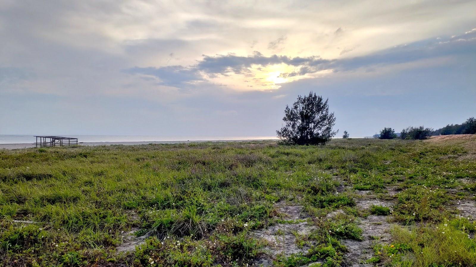 [台南][安南區] 城西夢幻湖|滿滿招潮蟹的秘境|城西防風林|鹿耳門夢幻湖|遊記