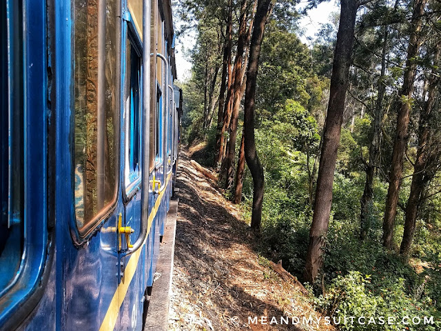 Toy Train, Ooty