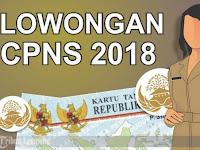 Pengumuman Resmi CPNS 2018 Secepatnya Diumumkan ! Ini Jangka Waktu Pendaftarannya