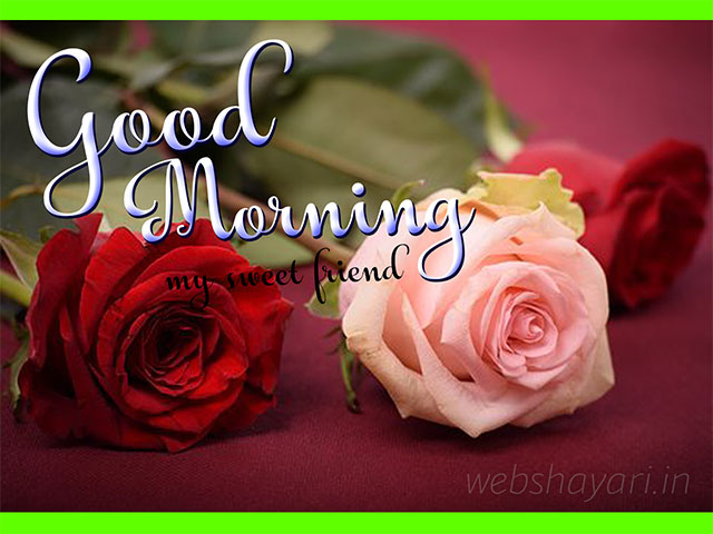 flowre good morning stock photo download