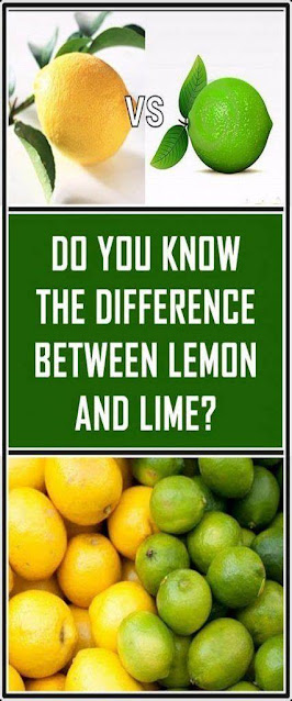 Do You Know The Difference Between Lemon And Lime?