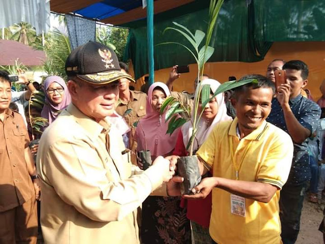Masyarakat Nagari Padang Kandang Pulau Air, Terima Bantuan 2000  Bibit Dari Wagub Nasrul Abit