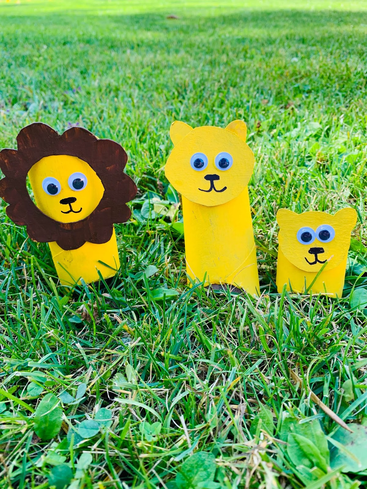 Lion Family Toilet Paper Roll Craft