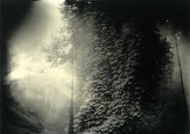 SALLY MANN-A Matter of Time at Fotografiska   ODALISQUE