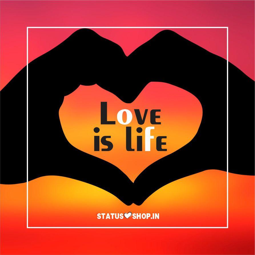 Love is Life  Whatsapp DP